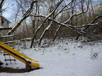 snow1114108.jpg