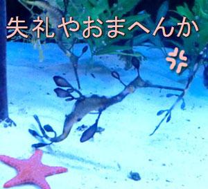 zoo10031011.jpg