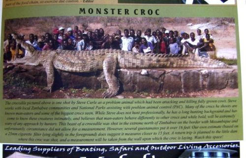 monster-croco.jpg