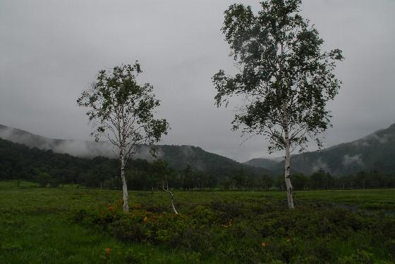 20100704-06.jpg