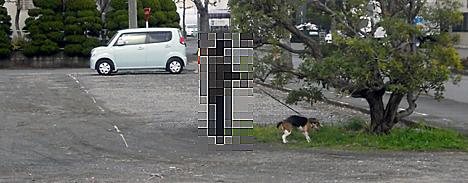 120302_3.jpg