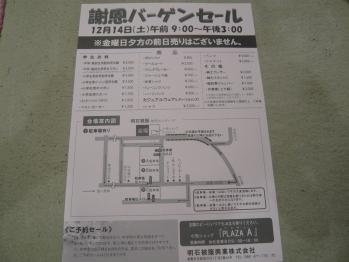 P1130517.jpg
