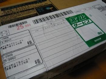 P1130650.jpg