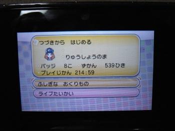 P1130662.jpg