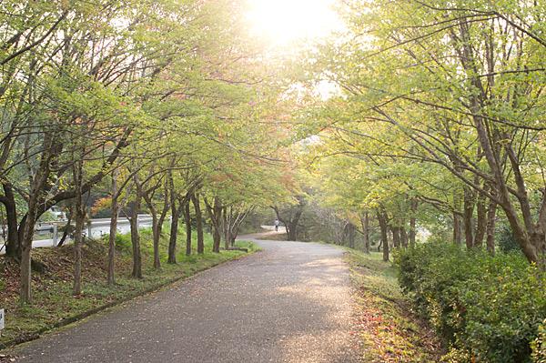 季節の風景-6