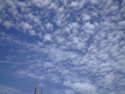 s-CA390039.jpg