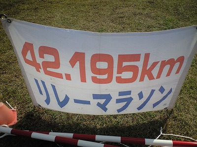 s-CA390076.jpg