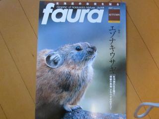 fauna1.jpg