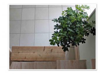 3_convert_20120901173850.jpg