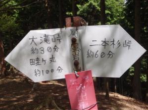 20110514-5.jpg