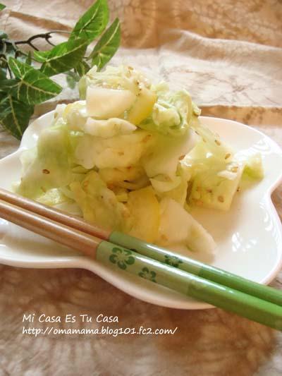 Cabbage_20100930121001.jpg