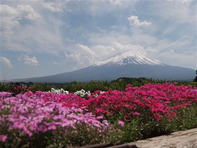 富士周辺15