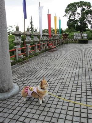 神祇神社2
