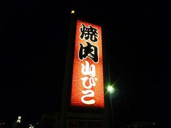 20101120YAMABIKO.jpg