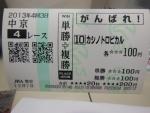 DSCN5986_20131207201556f13.jpg