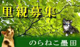 banner_sumida.jpg