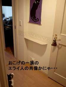 murasakinekosan4.jpg
