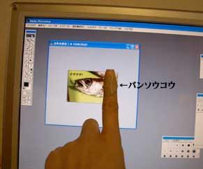 mutsukizu_110322.jpg