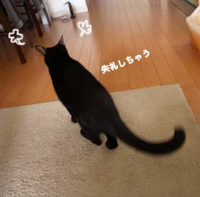 okowashidukami_3.jpg