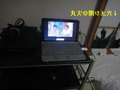 2011 06 27_9031