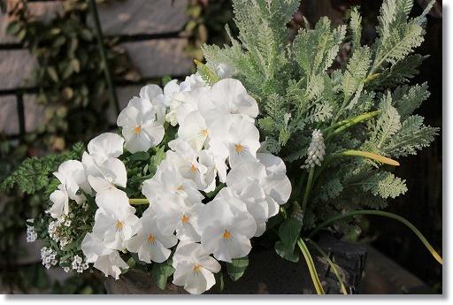白い寄せ植え