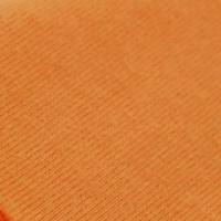 オレンジ (2)