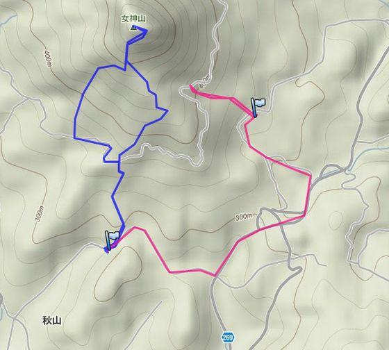 20111112.jpg