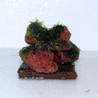 ウイローモス・アート溶岩石