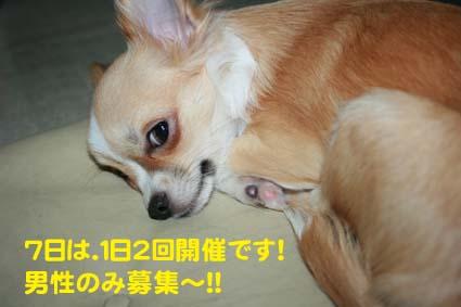 0001_20121003221405.jpg