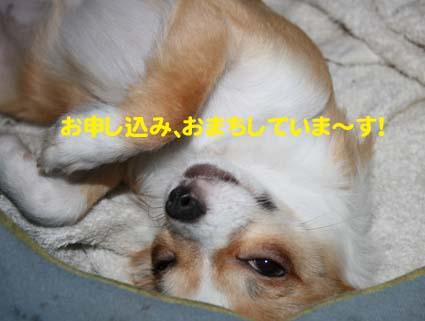 0002_20121003221405.jpg
