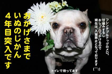 00_20120502194701.jpg