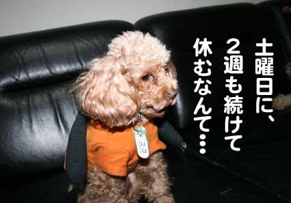 00_20121016173712.jpg