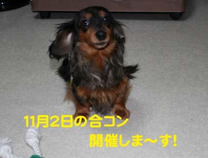 00_20121030220154.jpg
