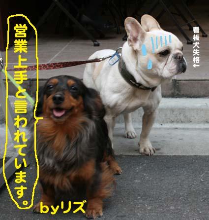 01_20120502194700.jpg