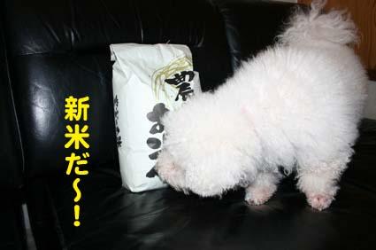 01_20121025214152.jpg
