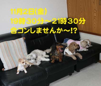 01_20121026195814.jpg