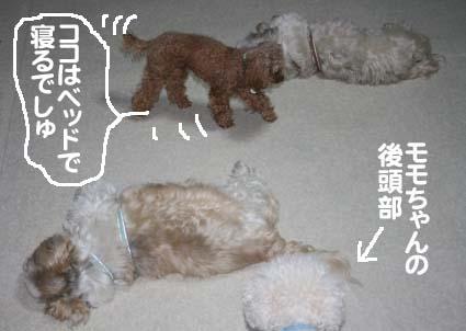 02_20120531122723.jpg