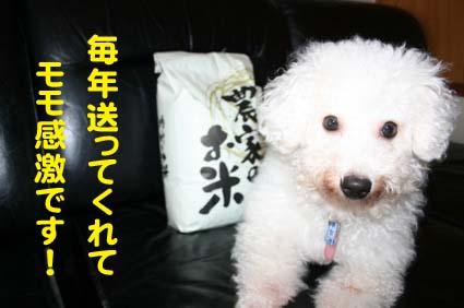 02_20121025214151.jpg