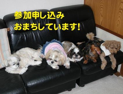 02_20121026195813.jpg