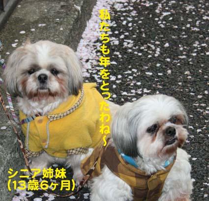 03_20120502194658.jpg