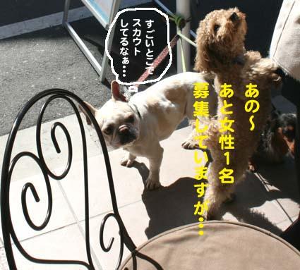 03_20120516175808.jpg
