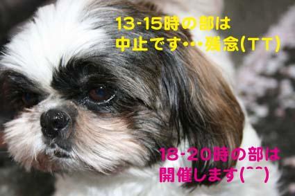 1_20120504184350.jpg