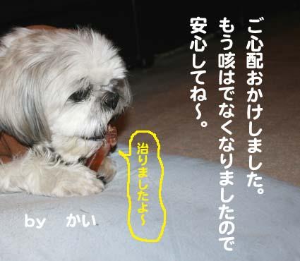 1_20120615203814.jpg