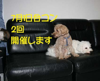 1_20120629132551.jpg