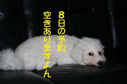 1_20120707001257.jpg