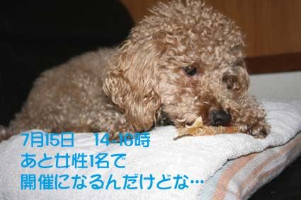 1_20120713183109.jpg