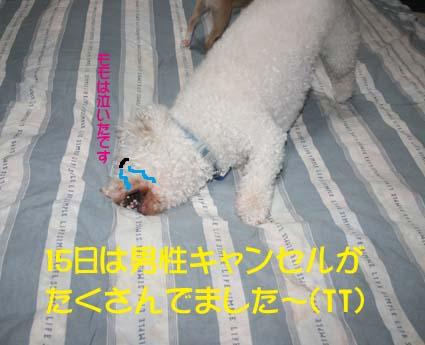 1_20120718012937.jpg