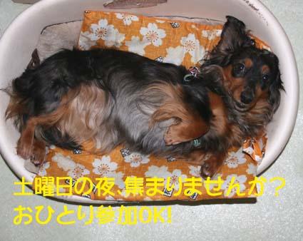 1_20120718015112.jpg