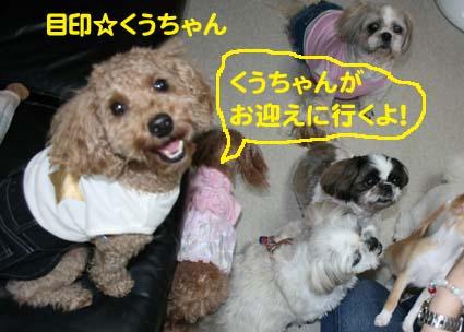 1_20120904155145.jpg