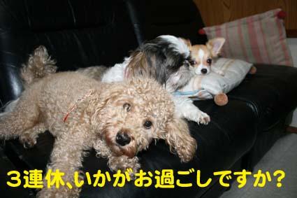 1_20120914182202.jpg